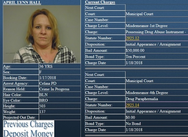 April Hall Charges